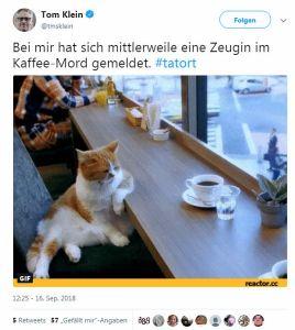 2018-10-23 Tatort 1066 Tiere der Großstadt - Katze von Tom Klein