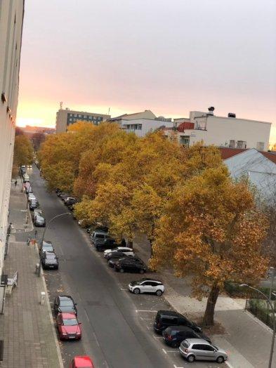 2019-02-06 Habersaathstraße 48 Fenterblick November